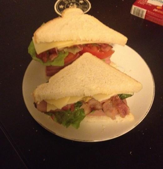 trump_sandwich (10)