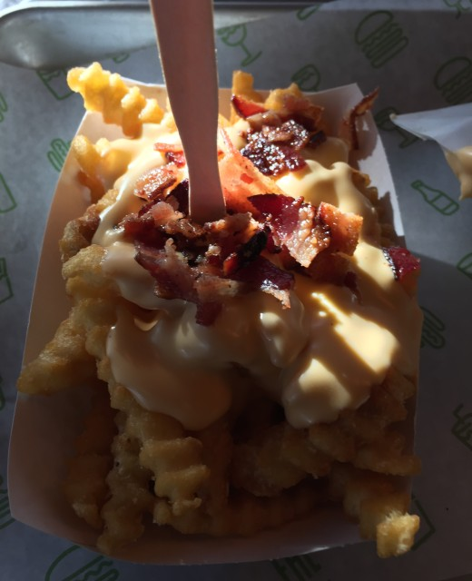 bacon_cheese_fries (4)