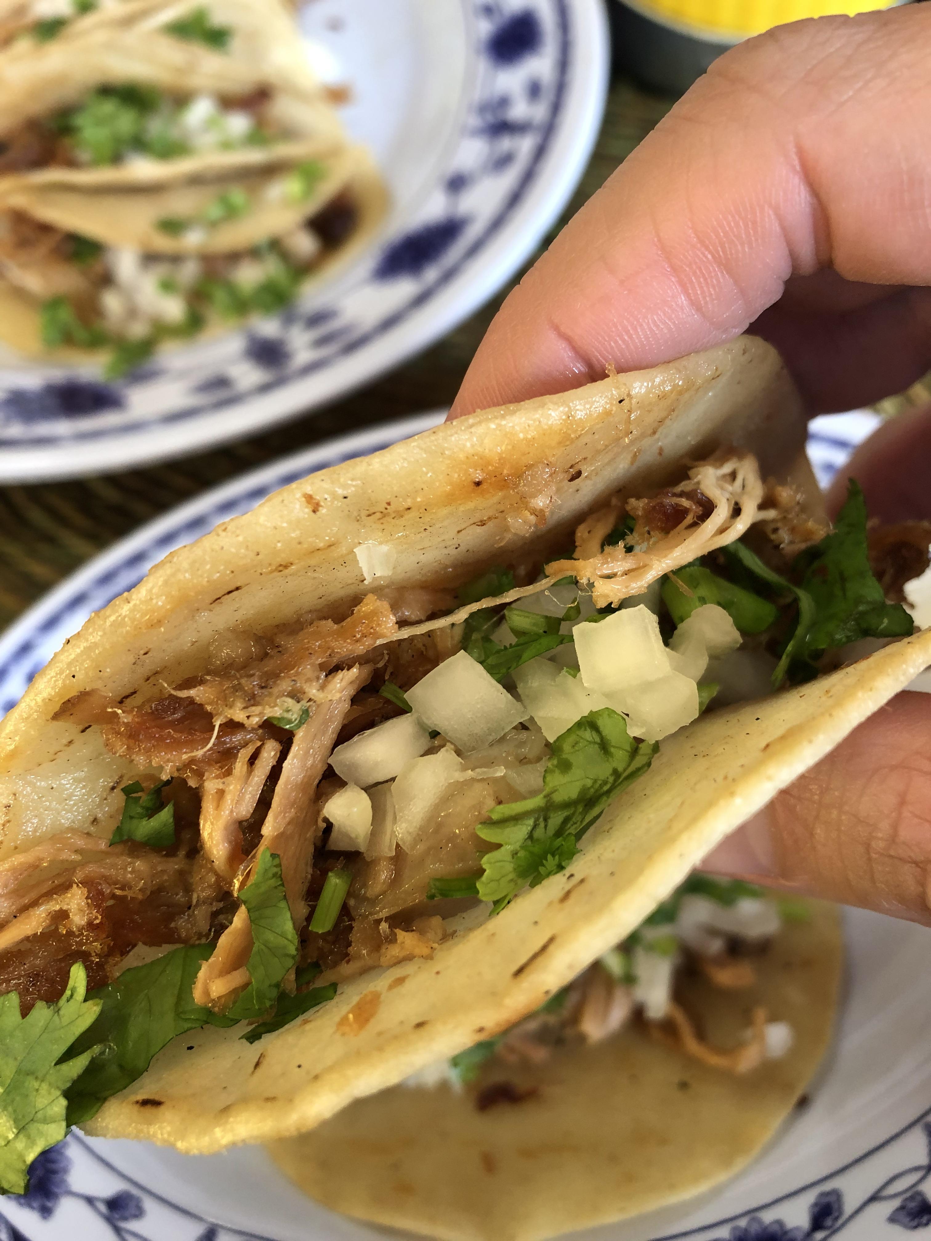 $1_carnitas_tacos (12)