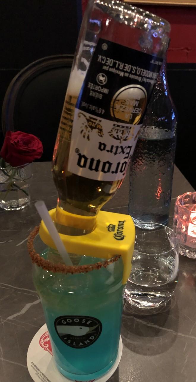mexican_bulldog (5)
