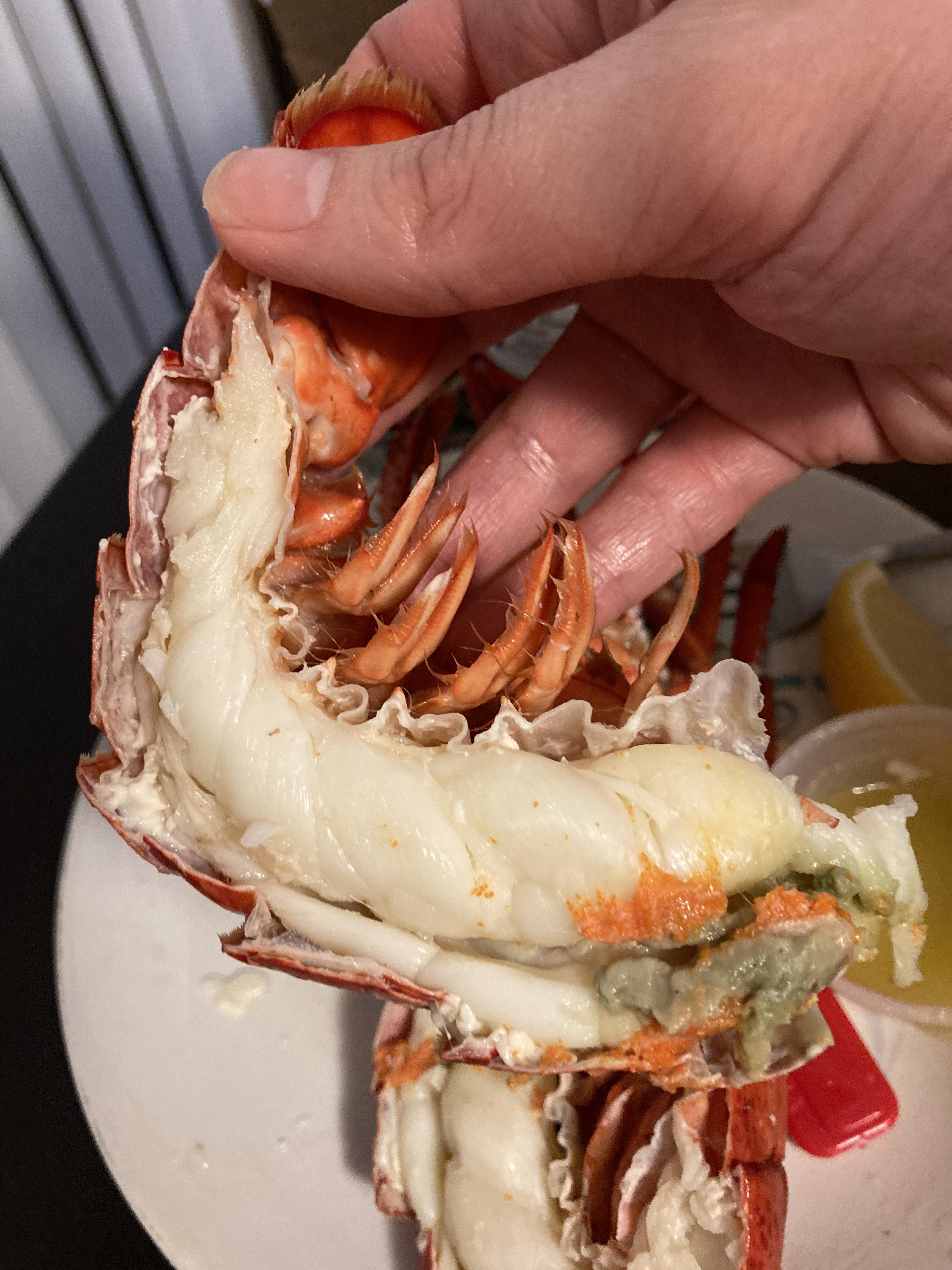 rodney's_atlantic_lobster (18)