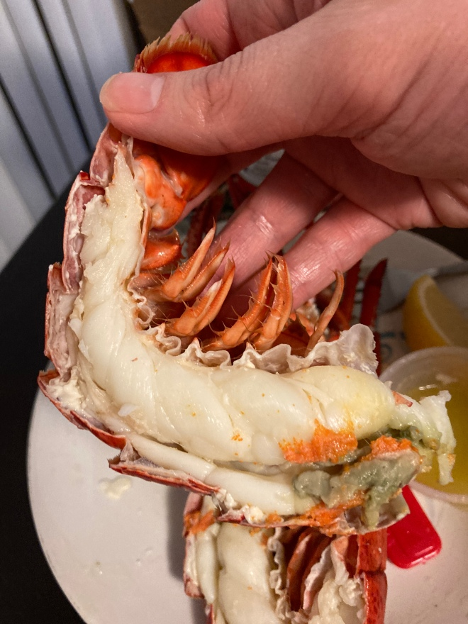 rodney's_atlantic_lobster (18)