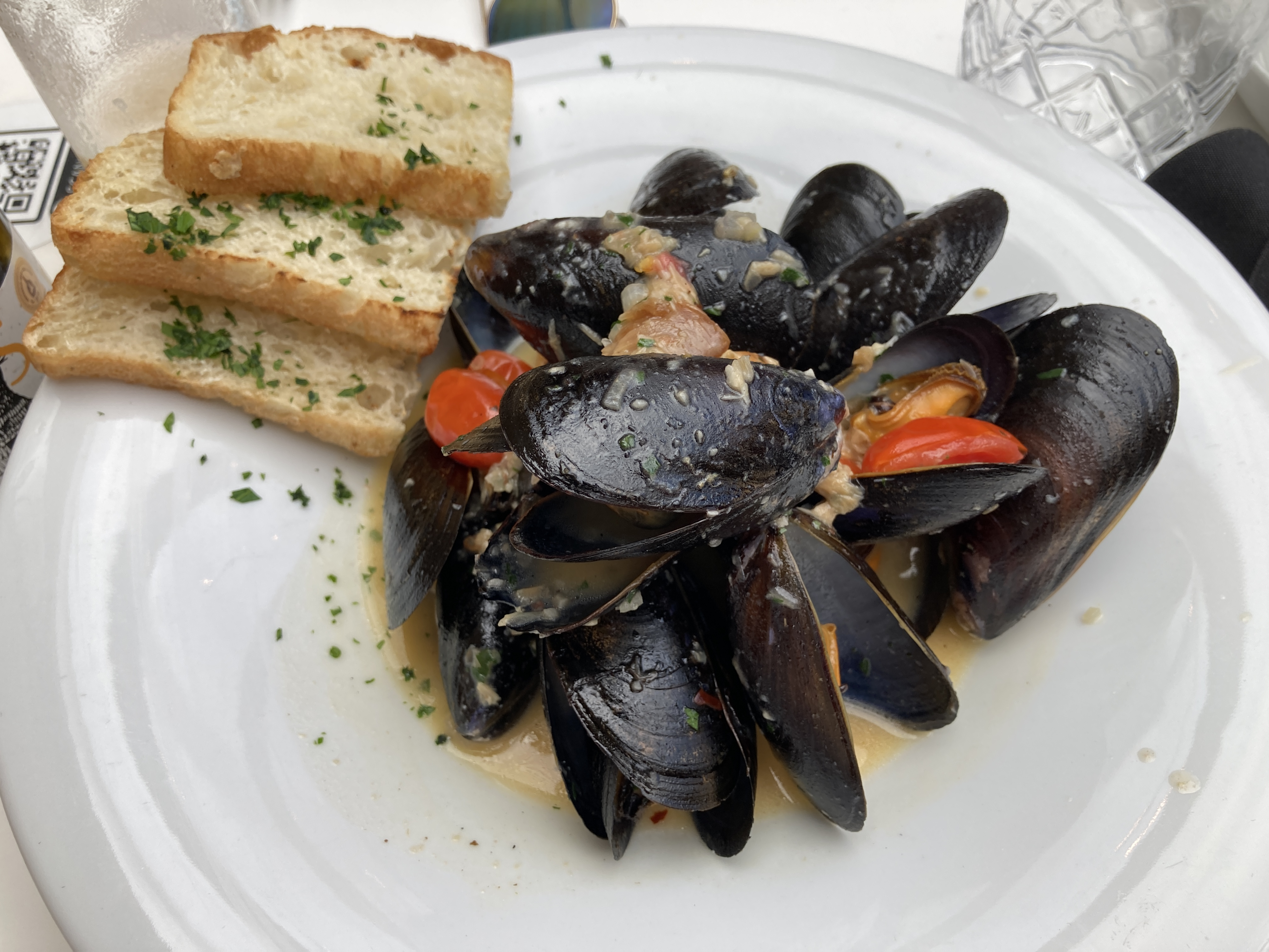 cano_pei_mussels (7)