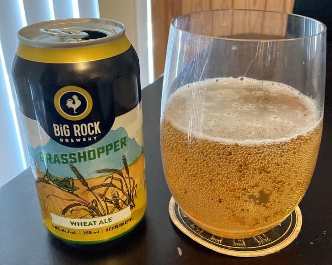 big_rock_grasshopper (10)